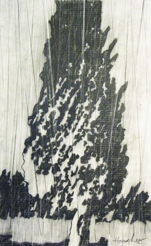 Cypress & Rain